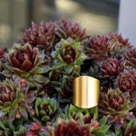 bague large laiton doré or fin lisse simple ethnique resistante ploom bijoux créateur